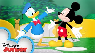 Its Donald Ducks Birthday! 🦆 | Mickey Mouse Clubhouse | Disney Junior