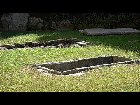 Fossili, necropoli e arte: sull'astronave del tempo di Arsago Seprio