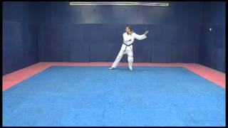 World Taekwondo Training Program -English language presentation!