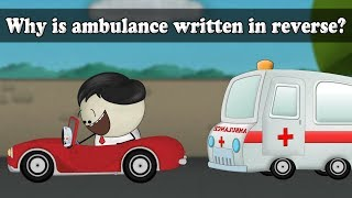 Lateral Inversion - Why is ambulance written in reverse? | #aumsum #kids #science