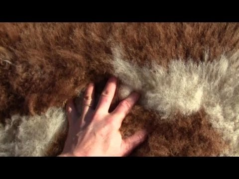 , title : 'How To Make Your Own Un-Bleached Sheep or Goat Skin Rug