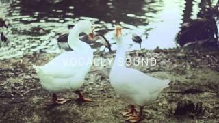 Brijs - Friends ft. Dandelion