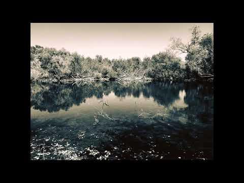 The Ravine by Sarah Pesina