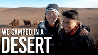 TSL Travels: Camping in a Mongolian Desert for 3 Nights at -6 Degrees!