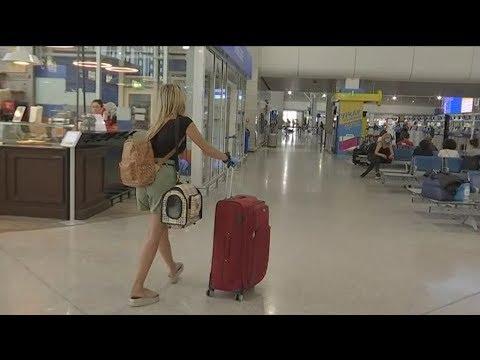Ελευθέριος Βενιζέλος: Ξεκινούν σταδιακά οι πτήσεις εσωτερικού στην  Ελλάδα