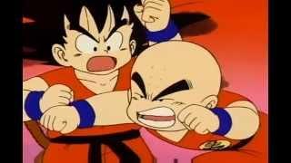 Goku Destroys Krillin