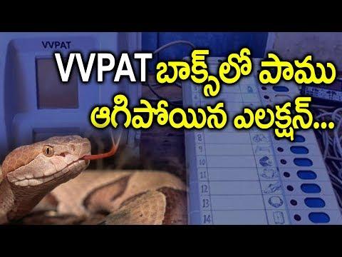 VVPAT బాక్స్ లో పాము ఆగిపోయిన ఎలక్షన్ ..! | Snake Inside VVPAT Machine Holds Up Polling In Kannur
