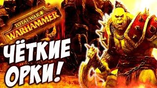 Total War: Warhammer - ЧЁТКИЕ ПАЦАНЫ ОРКОВ!