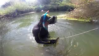 Московская область река воря рыбалка