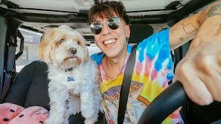 CAR RIDES with BOBBY & PUPPY DICAPRIO!! (+ addressing things)