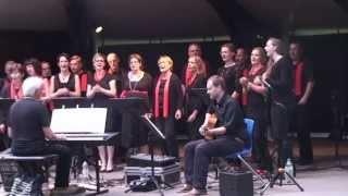 preview picture of video '20130621 Schöne Musik in Musikmusche von Kressbronn'