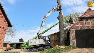 Spezialbaumfällung im Wohngebiet - Raupenbagger am Limit - Holzfäller im Einsatz - risk tree felling