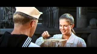 The Sand Pebbles (1966) Video