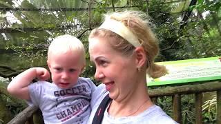 Веселое видео про Зоопарк #4 лучший зоопарк мира FFGTV в зоопарке Сингапура