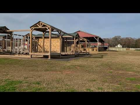 Video Of Denver Downs Farm, SC