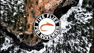 Five Flies for November 2019 - Fly Fishing in Deckers, Colorado