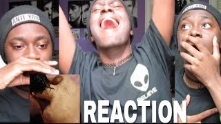 Harry Styles Album Reaction (I Cried and Died)