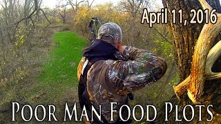 Midwest Whitetail | Food Plot Planting Tips -- Affordable Food Plots