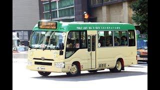 (有新型號的19個座位小巴)小巴 91 Coaster 浩景臺➡️荃灣鹹田街 (1080p50)