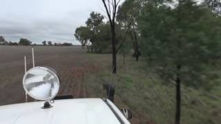 Man punches a kangaroo to rescue his dog Full Version