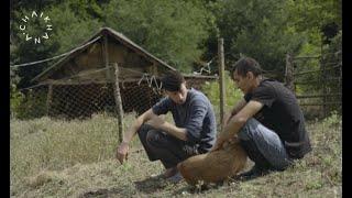 Albasha, Alisa, Berta, Jessy, Kazbek and… (a documentary by  Oktay Namazov)
