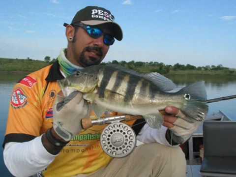 Pescando Tucunaré Azul