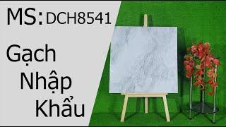 DCH 8541