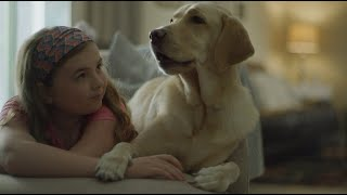 A Dog I'm Not | Southeastern Guide Dogs