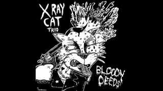 X Ray Cat Trio - Miss October
