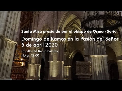 La Santa Misa de Domingo de Ramos, en la catedral./DOS