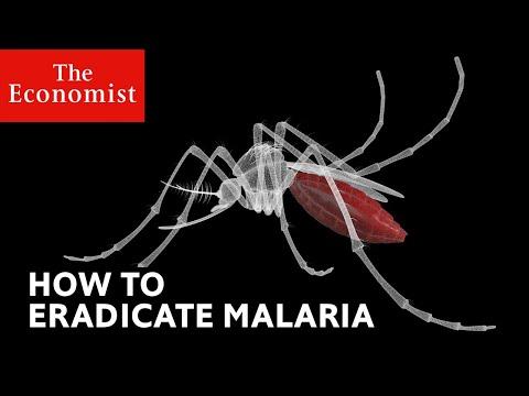 How to defeat malaria | The Economist (видео)