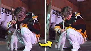BTS LOVE ANIMALS AS A PET