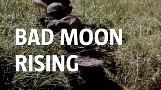 Credence Clearwater Revival   Bad Moon Rising