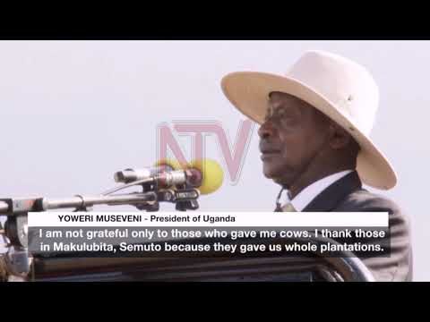 Museveni calls for adoption of commercial agriculture in Nakaseke