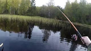 Озера карелии где запрещена рыбалка
