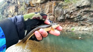Рыбалка на горных реках приморья и хабаровска