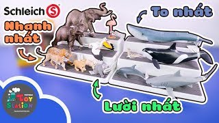 Khám phá thế giới động vật kỳ thú từ hãng Schleich ToyStation 413