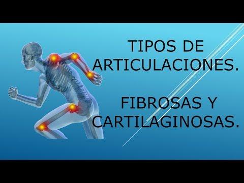 Dolor en la articulación de la cadera en la parte inferior izquierda