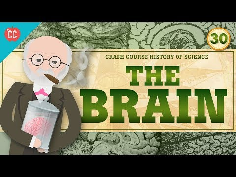 The Mind/Brain: Crash Course History of Science #30