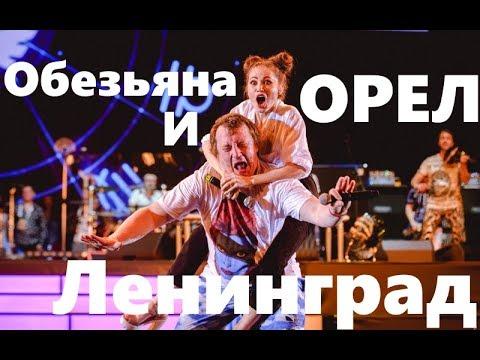 Группа Ленинград - Обезьяна и орел - Юбилейный концерт группы Ленинград 20 лет
