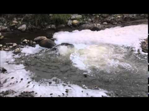 La schiuma del Ticino