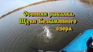 Безымянное озеро в красном селе рыбалка