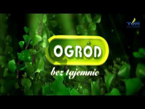 Leczenie alkoholizmu Wołgograd cenie