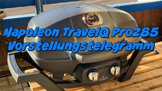 Napoleon TravelQ PRO285 - Kurzvorstellung des kompakten Gasgrills für Unterwegs