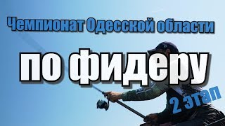 Календарь фидерных соревнований 2020 московская область