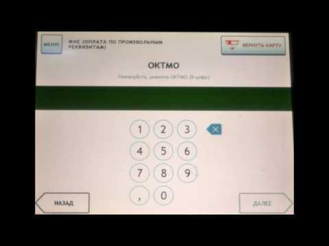 как оплатить госпошлину за регистрацию ИП в терминале Сбербанка