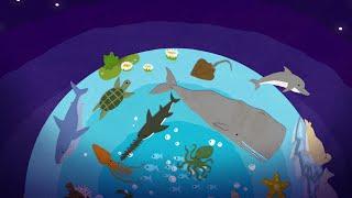 Развивающий мультфильм для детей на русском Учим морских животных