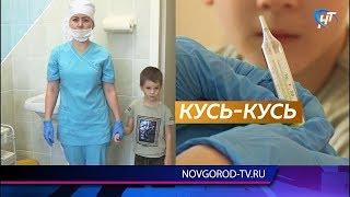 Медики планируют привить от гриппа 40% детского населения