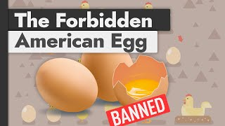 Why US Produced Eggs Are Banned Across Europe (& vice versa)
