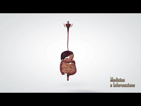 Consigli sulla salute per la perdita di peso